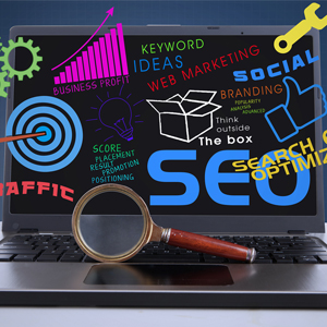 Digital Marketing / SEO